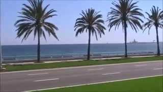 City Sightseeing Tour Palma de Malorca 2015 (HD, Spain)