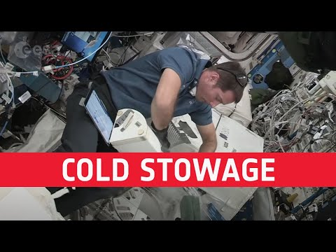 Science so cool it is freezing!