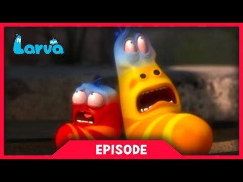 LARVA - THE SILVERS | Best Cartoon Movie | Cartoons For Children | LARVA Official