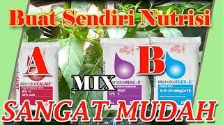 Buat Sendiri Nutrisi AB مزيج Sangat Mudah إنشاء الخاصة بك من السهل جدا مزيج AB التغذية