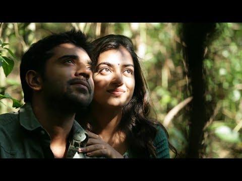 pon vaanam paneer thuvuthu,ilayaraja song, tamil love cover song,