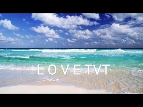 ??? ??:LOVE VTV