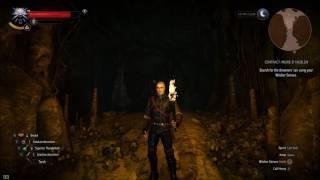 Witcher 3: Wild Hunt - Creature Minimap Indicator Bug