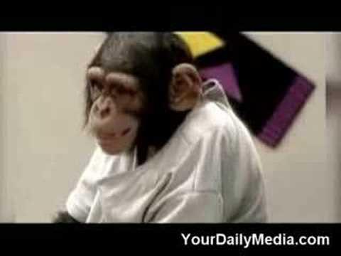 Kissing Monkey Prank| Monkey Kissing Prank