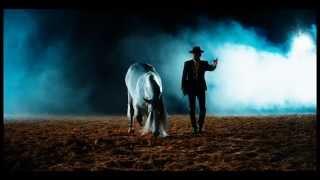 LORD OF THE HORSES (ANTALYA-BELEK)