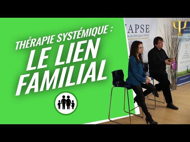 Formation Thérapie Systémique : Le Lien Familial par Psynapse.