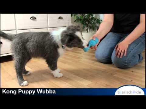 KONG Puppy Wubba: Ein Welpe wächst auf mit tiierisch.de