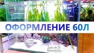 Оформление аквариума на 60л