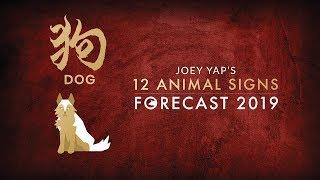 2019 Animal Sign Forecast: DOG [Joey Yap]