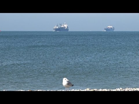 Shipspotting in Port of Le Havre | 04.10.2016 | 4K