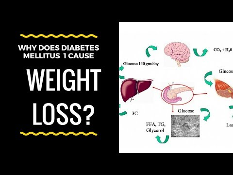 Why does diabetes mellitus type 1 cause weight loss?