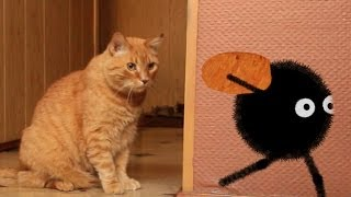 Spider vs Cat / Паук против кота. 2d animation in Anime Studio Pro. Funny Cartoon. Паук Амик(Мой канал на Youtube / Subscribe to! - http://goo.gl/Z1MyF5 Мой сайт / My website! - http://mult-uroki.ru Как я монетизировал свой канал! - http://mult-ur..., 2014-05-19T10:57:40.000Z)