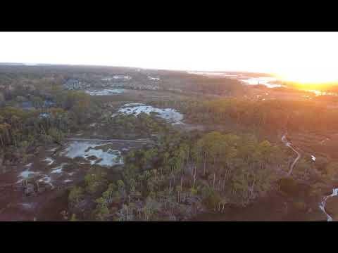 Skidaway Island RV Park - Savannah, GA