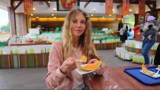 Путешествие по Японии 2017 года, семья Смирновых