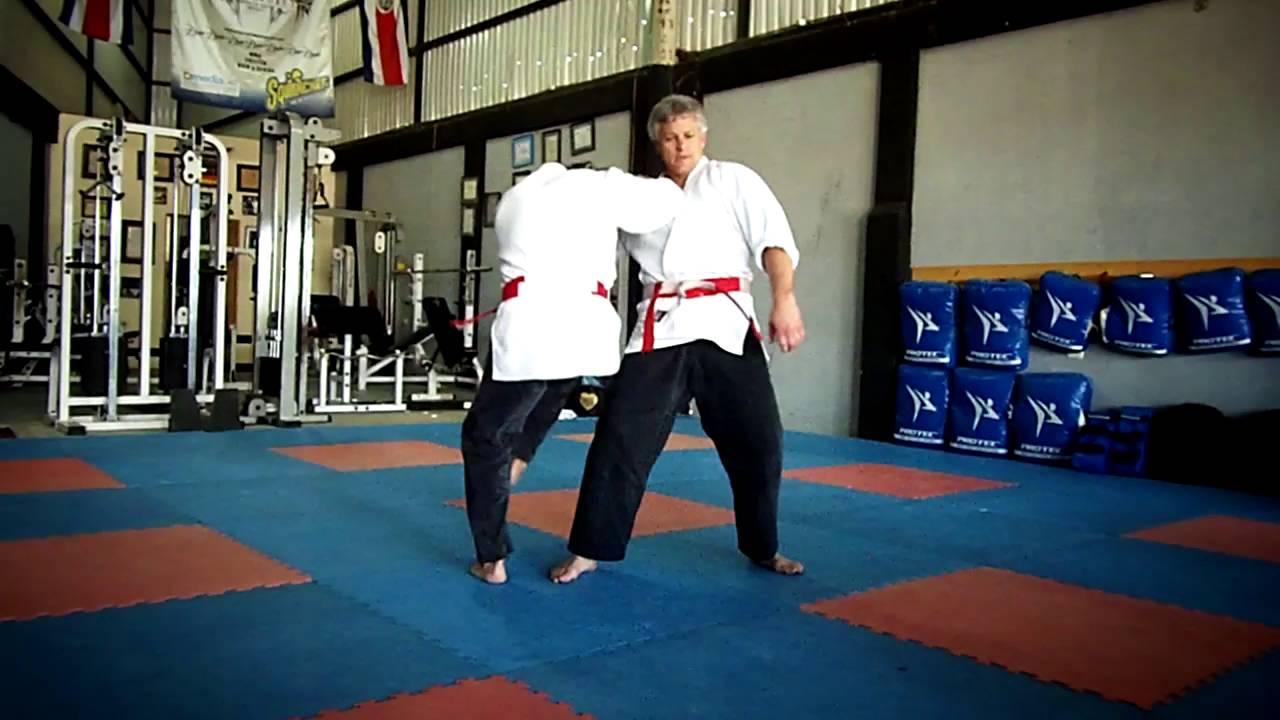4e1ac847ec280 Danzan Ryu Jujitsu - Shinnin Techniques - YouTube
