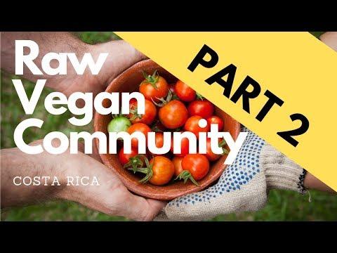 PART 2 - ORGANIC RAW VEGAN community in Costa Rica!