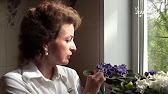 Сортовые фиалки почтой детки разных сортов - YouTube