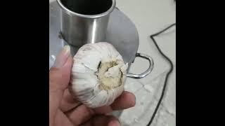 전체 통 마늘까는 기계 마늘박피기 필링 껍질 벗기기 가…