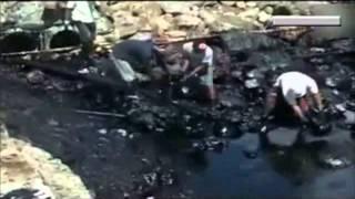 Нефтяное загрязнение у берегов из-за тайфуна