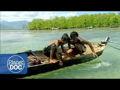 Indonesia. Bajau (Sea Gypsies Tribe) | Tribes & Ethnic Groups