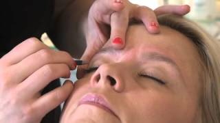 Repeat youtube video HD Brows for Blonde Hair