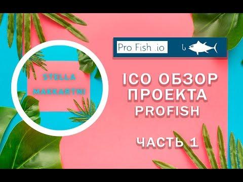 profish---Обзор-ico-проекта