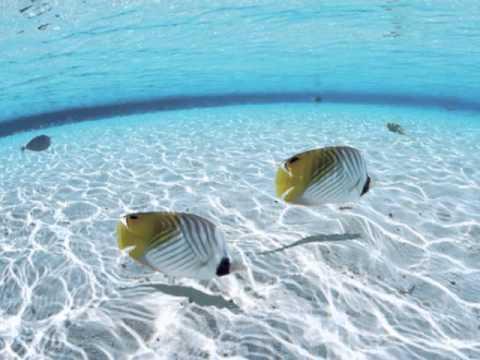 "Relaxing Music - ""Warm Sea"""