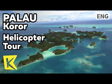 【K】Palau Travel-Koror[팔라우 여행-코로르]헬기로 둘러본 산호바다와 섬/Helicopter Tour/Rock Island/Seventy Island/Dugong