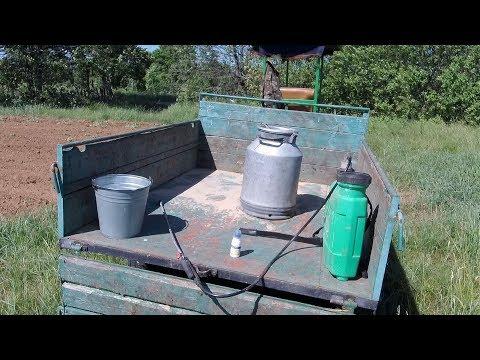 Применение гербицида по кормовой свекле.