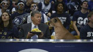 BYU Basketball Real Cougar Commercial
