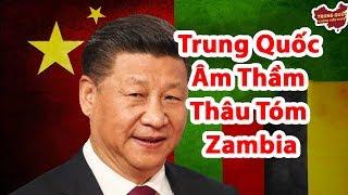 Trung Quốc Âm Thầm Thâu Tóm Zambia   Trung Quốc Không Kiểm Duyệt