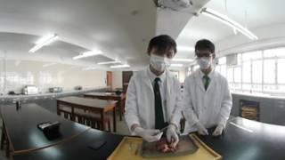 地利亞(協和)VR虛擬實境_解剖豬心2