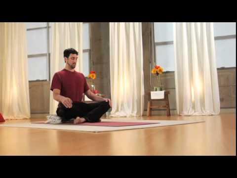 Aetna Viniyoga Stress Reduction Program