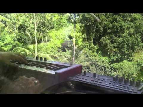 """Ayung Reflections - Bali"" - Live Location Jam in Bali on Elektron Analog Four & Alesis Micron"