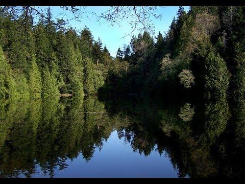 Bigfoot Screams And Bad Smells At Fragrance Lake In Washington State...