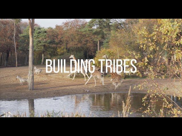 Danielle Braun - Building Tribes