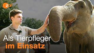 Lutz van der Horst im Zoo – Ferienjob-Tour mit Lutz und Fabian