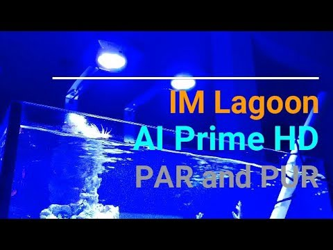 Innovative Marine 25 lagoon - AI Prime HD PAR and PUR readings