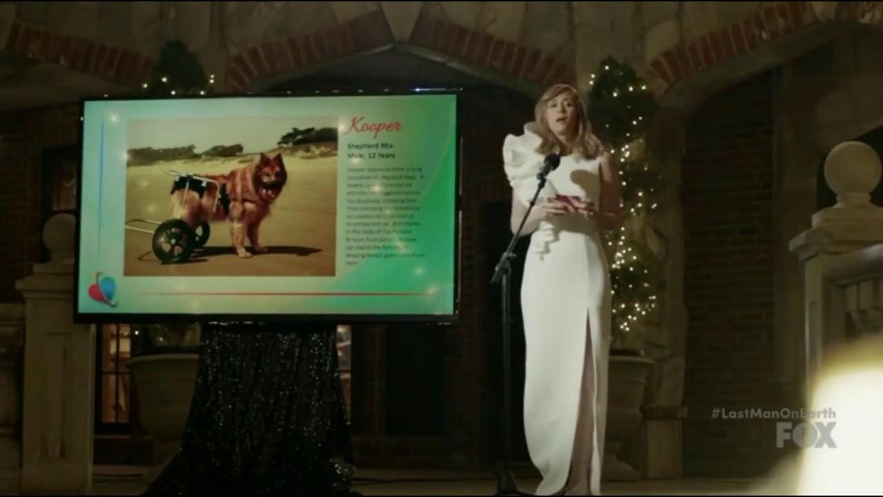 Download Last Man on Earth Kristen Wiig Wheelchair Humor