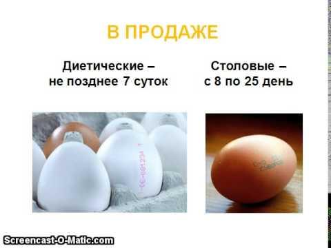 Учебная презентация тема: Яйца (как определить качество)