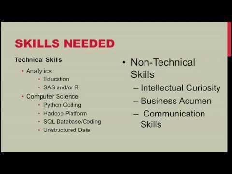 Data Scientist Job, Skills, and Projects