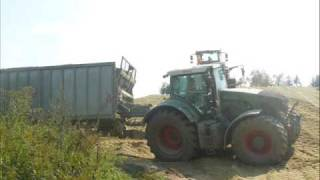 silage in hungary