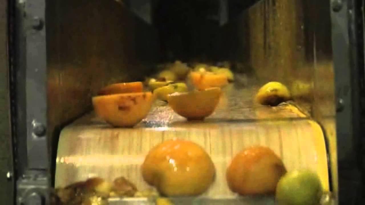 Peeled halves peach sorter Titan II - TOMRA Sorting