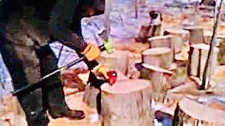 "Splitting large oak chunks in half with Wilton ""indestructible handle"