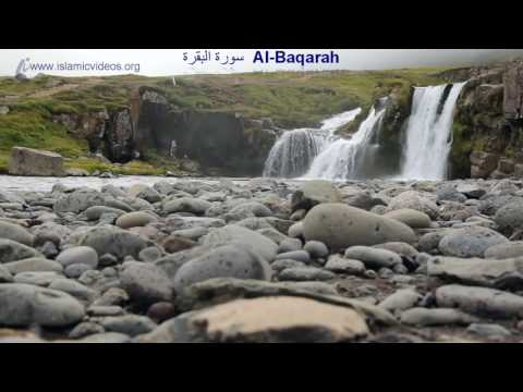 Surah Baqarah, 1 of the World's Best Quran Recitation in 50+ Languages