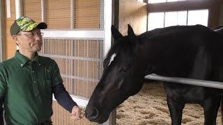 【天皇賞・春】シャケトラ・角居勝彦調教師 素質馬がいよいよ開花の時を迎えた