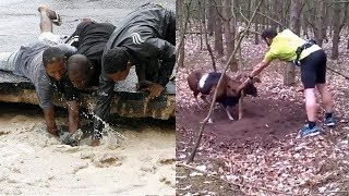 TOP Animal Rescues, Emotional/Inspiring/Funny Will Melt Your Heart Compilation.  REAL LIFE HEROES