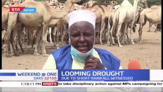Looming Drought: Kenya livestock council sounds alarm due to short rainfall witnessed