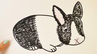 Wie zeichnet man ein Kaninchen | süßer Hoppelhase zum Nachmalen | Anleitung zum Malen