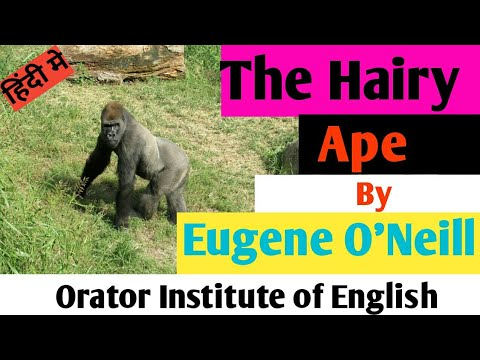 Ape hairy plot summary